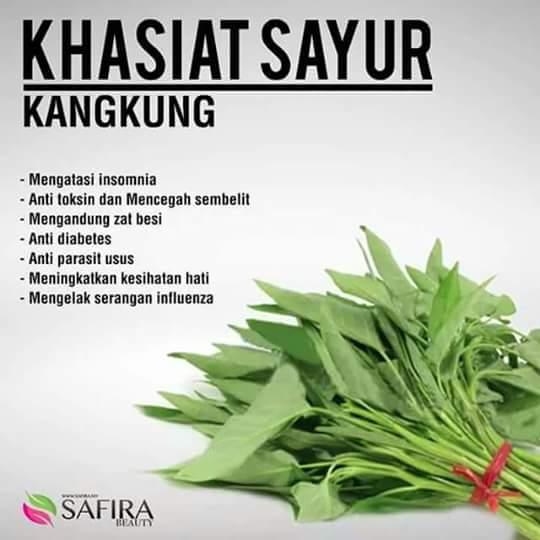 khasiat_kangkung