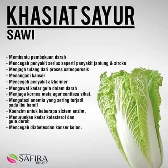 khasiat_sawi